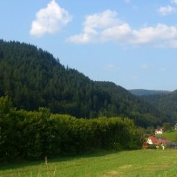 The Black Forest: A Great Place to Hide a Body